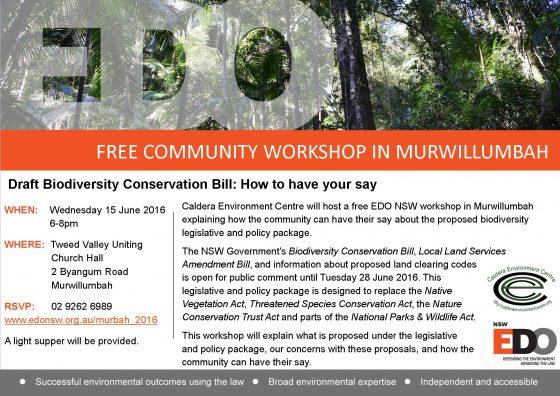 160615_Murbah_Biodiversity_Flyer